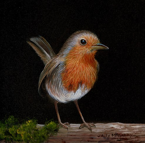 Robin Waiting by Alex McGarry - Varnished Original Painting, Canvas on Board
